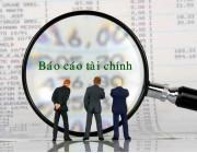 Những thông tin hạn chế của báo cáo tài chính